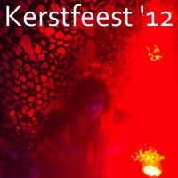 Kerstfeest 2012
